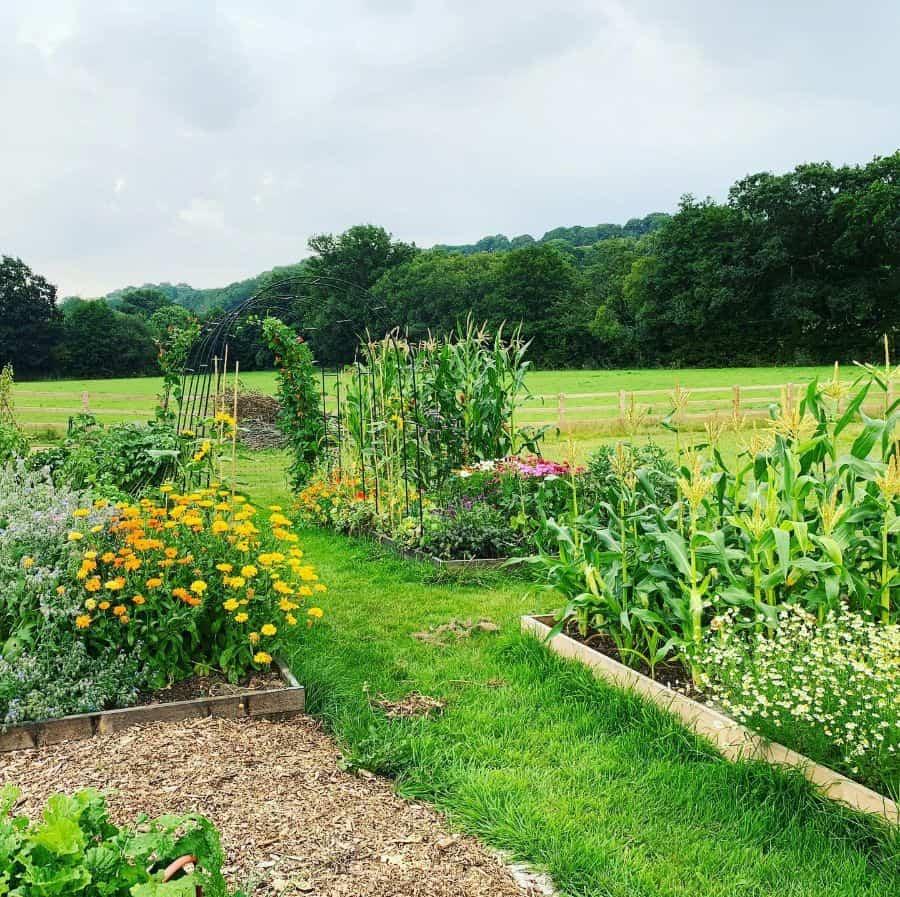 backyard farm raised garden bed ideas grow_your_own_grub