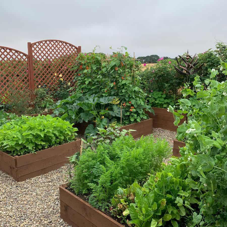 backyard farm raised garden bed ideas ianmacall