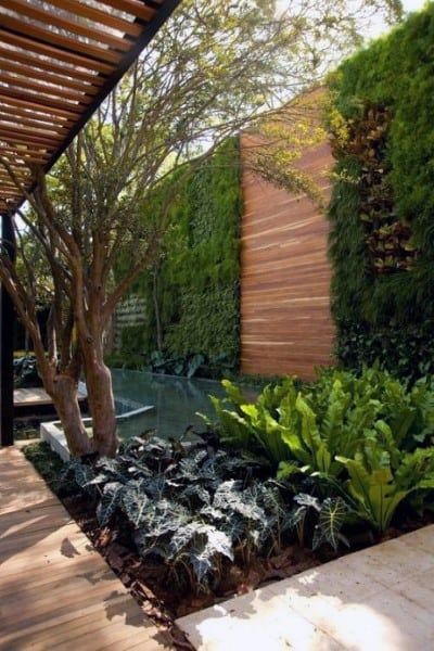 Backyard Fencing Options