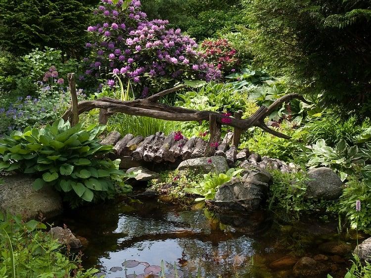 Backyard Garden Pond With Wooden Bridge