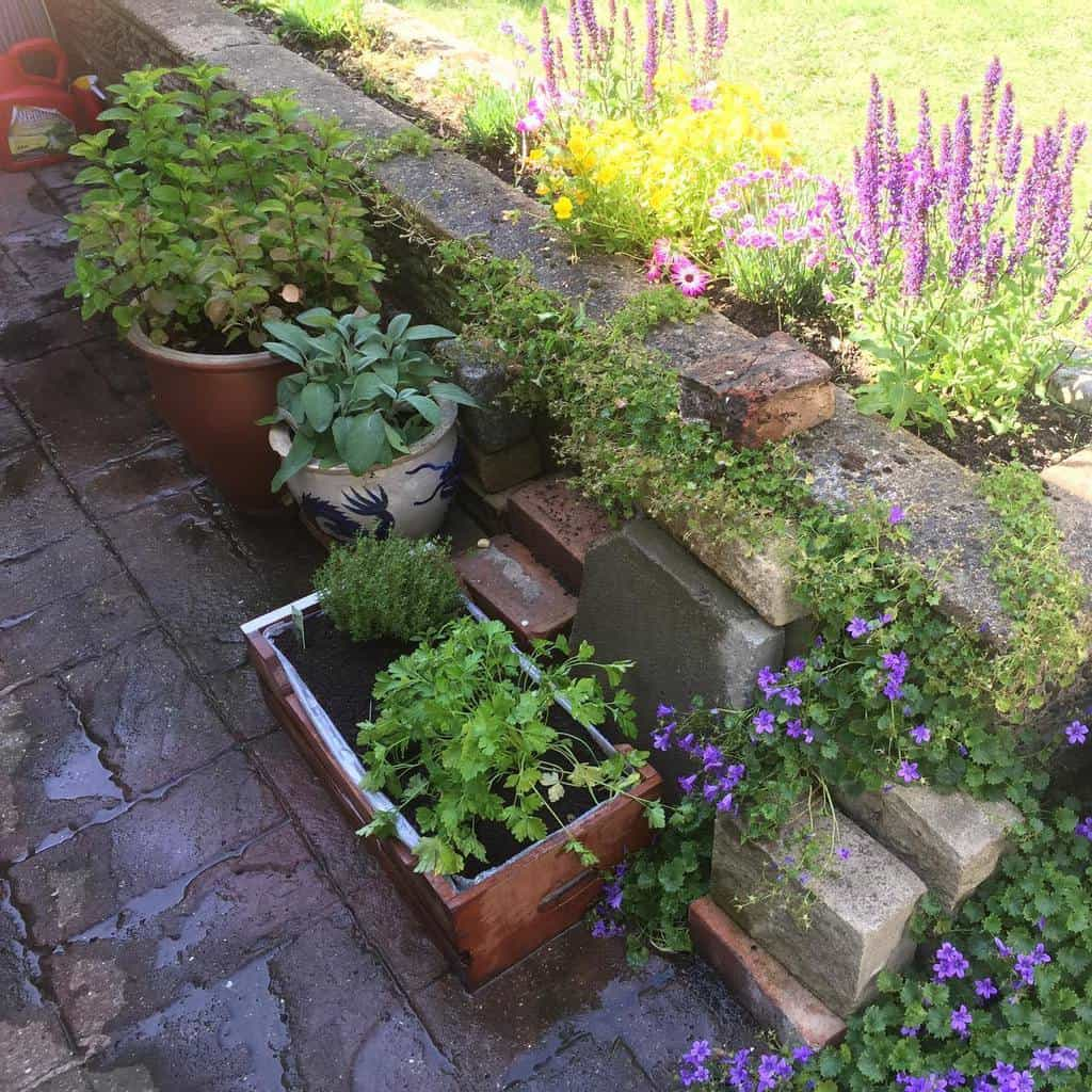 backyard herb garden ideas pemberton_julie
