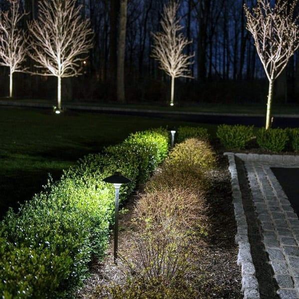 Backyard Landscape Lighting Home Designs