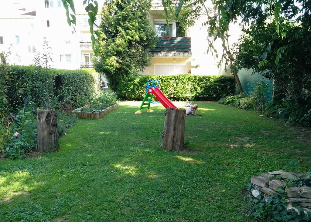 backyard shade garden ideas amikiskertunk