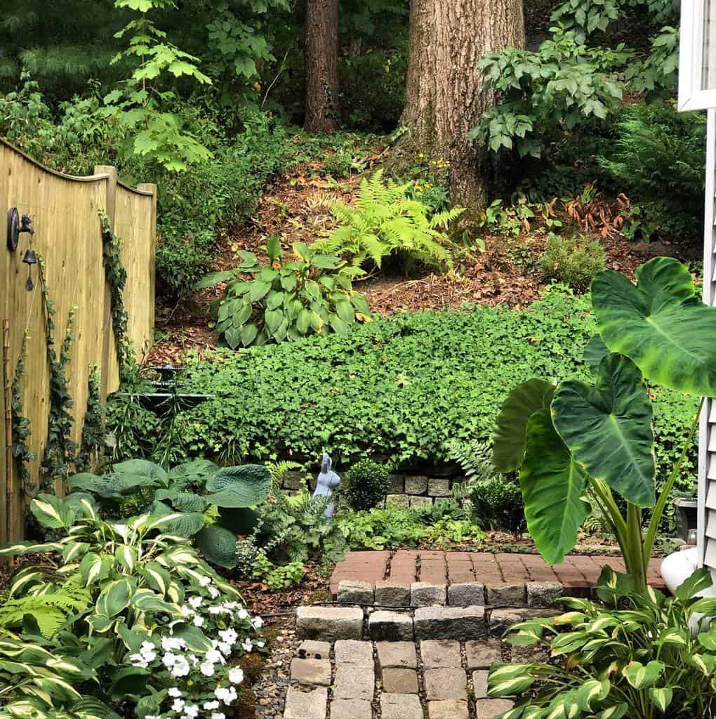 backyard shade garden ideas brooksstudios_78