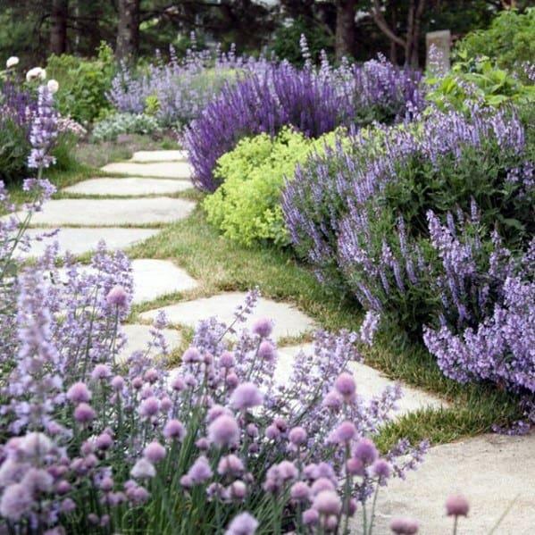 Backyard Stone Walkway Ideas With Purple Flower Plants