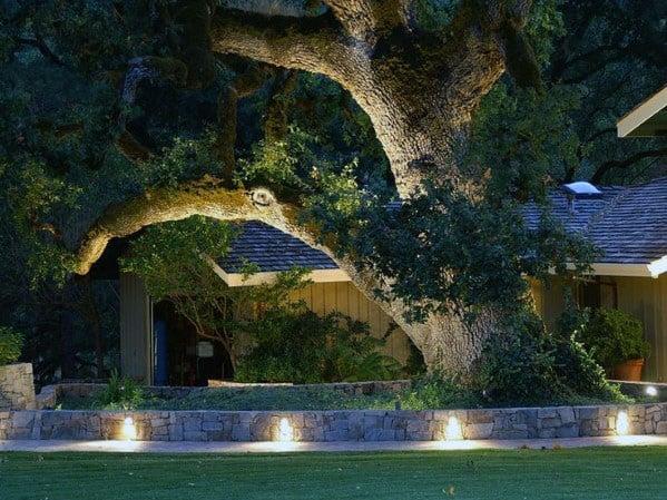 Backyard Walkway Landscaping Lighting Ideas
