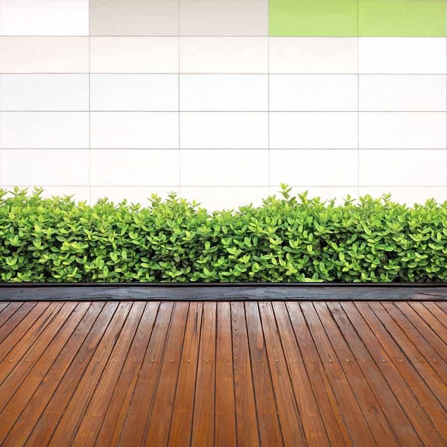 Top 50 Best Wooden Walkway Ideas