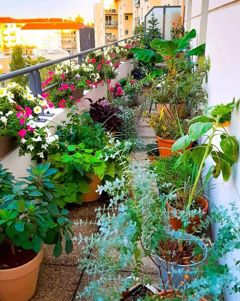 balcony or rooftop container garden ideas 17m2garden