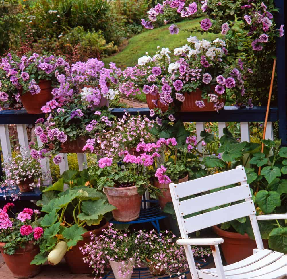 balcony rooftop flower garden ideas 1