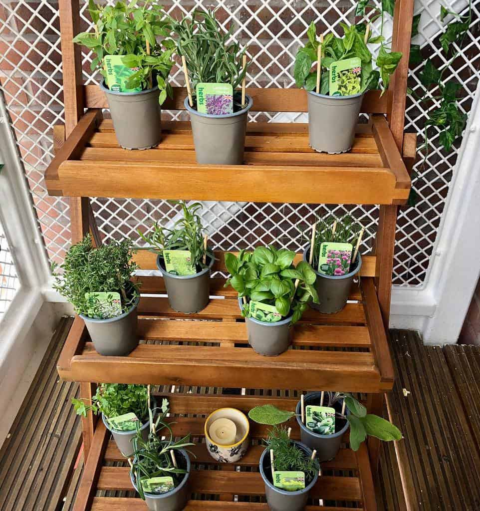 balcony rooftop herb garden ideas choclovvalisa