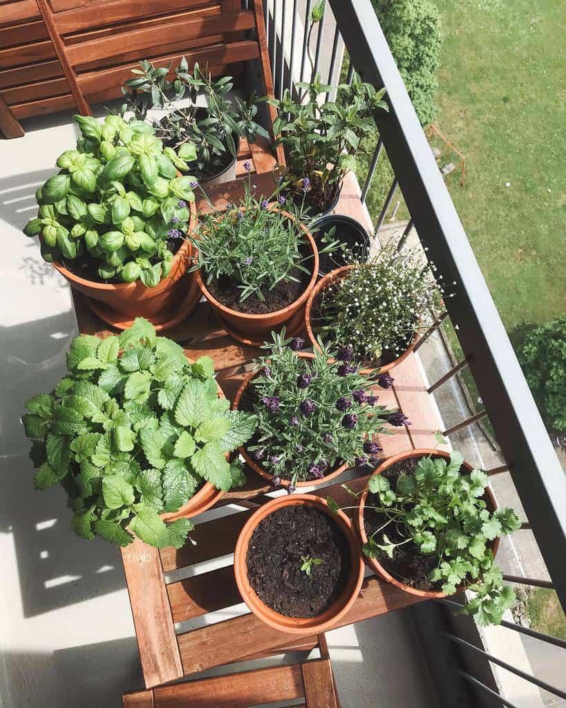 balcony rooftop herb garden ideas hiashome