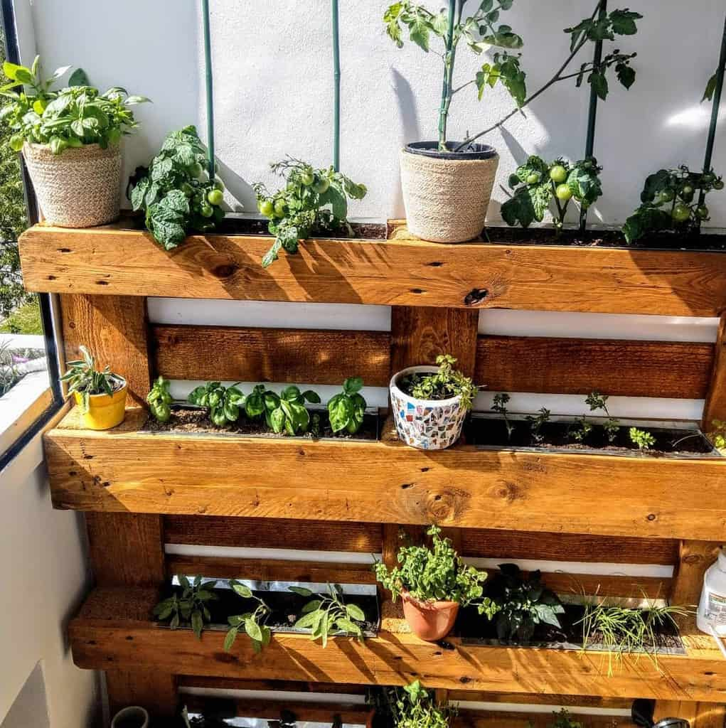 balcony rooftop herb garden ideas solution_meum