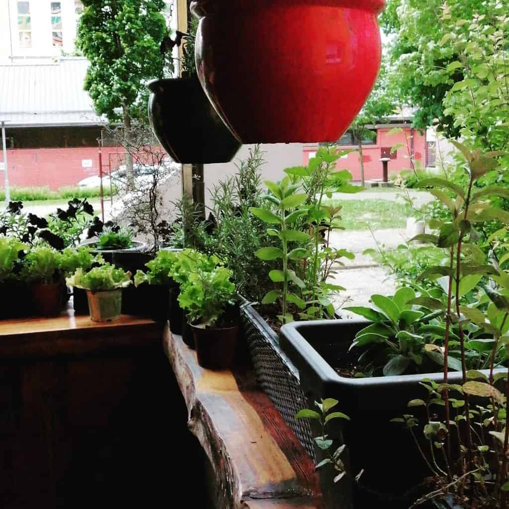 balcony rooftop herb garden ideas tamaragradinski