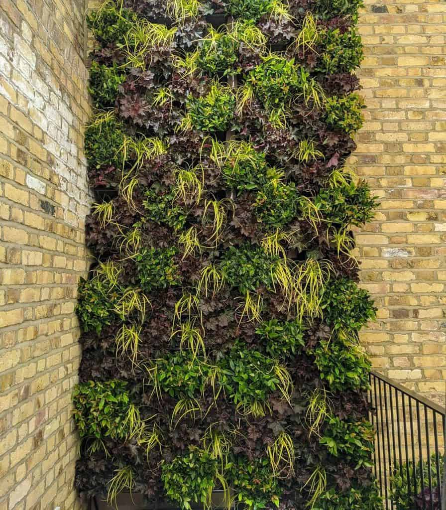 balcony vertical garden ideas biophilicdesigns