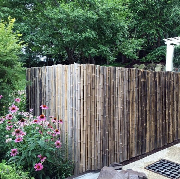 Bamboo Backyard Fence Designs