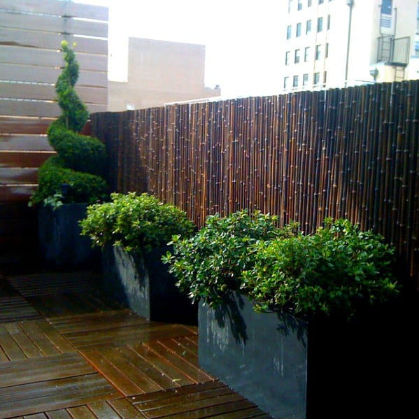 Bamboo Fence Home Designs