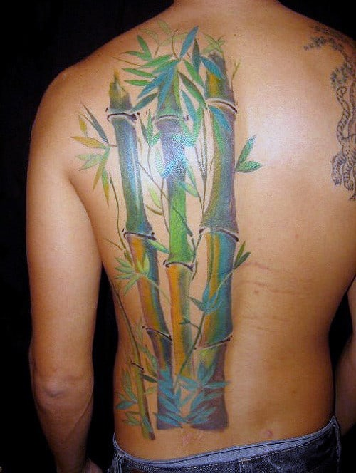 Bamboo Half Of Back Tattoos For Men