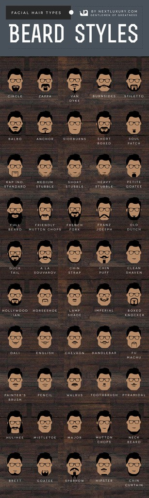 Beard Styles And Hair Types For Men Infographic Chart