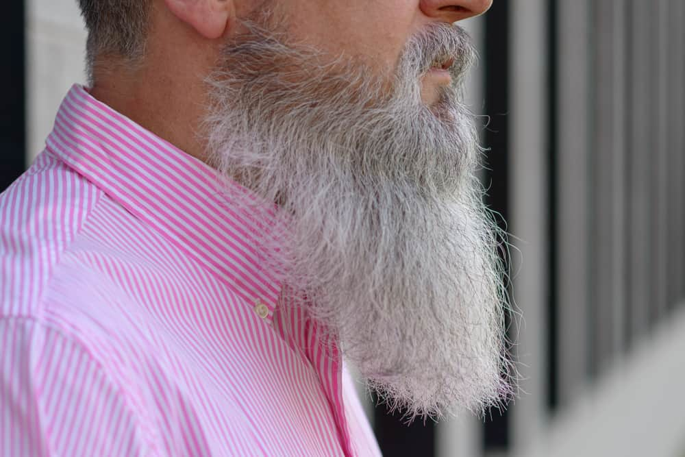 close up side view of long bearded grey haired man