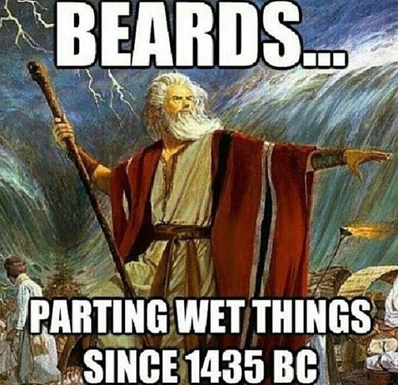Beards Parting Wet Things Since 1435 Bc Beard Memes