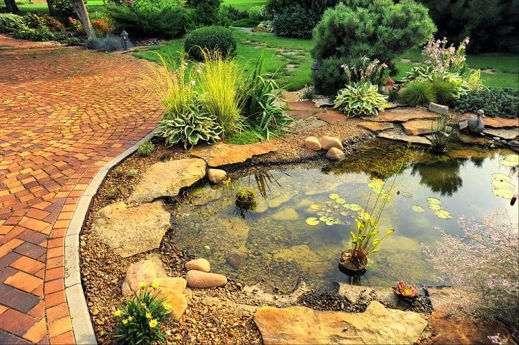 Beautiful Classic Backyard Small Shallow Pond