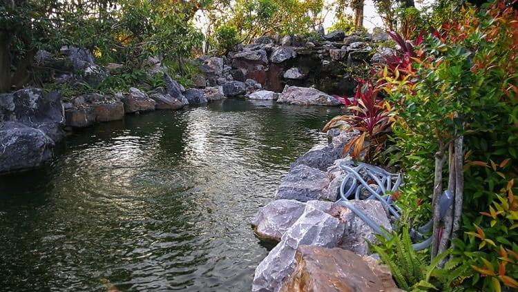 Beautiful Designed Garden Backyard Pond Landscaping