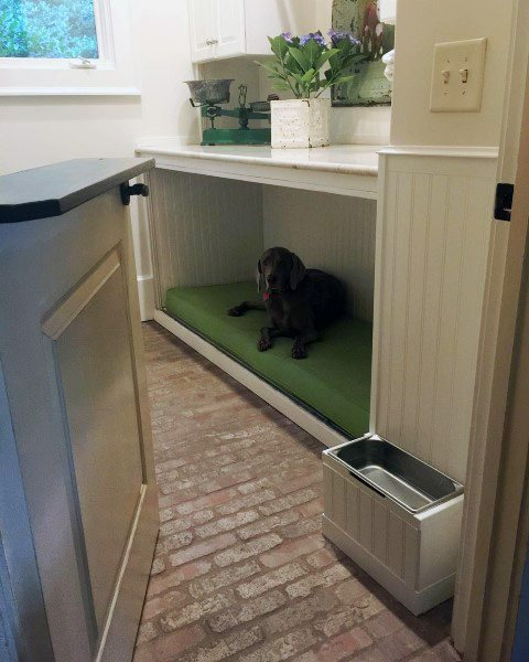 Beds For Dog Room Ideas