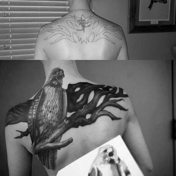 Bird On Tree Branch Cover Up Upper Back Tattoos For Men