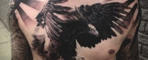 60 Bird Tattoos For Men – From Owls To Eagles