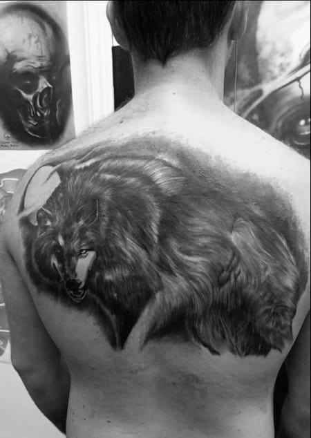 Black And Grey Shaded Male Upper Back Wolf Tattoo