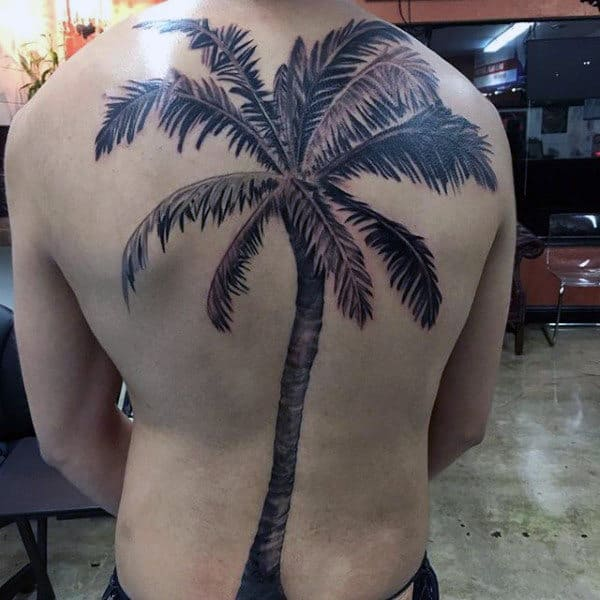 Black Large Leaved Palm Tree Tattoo For Men On Whole Back