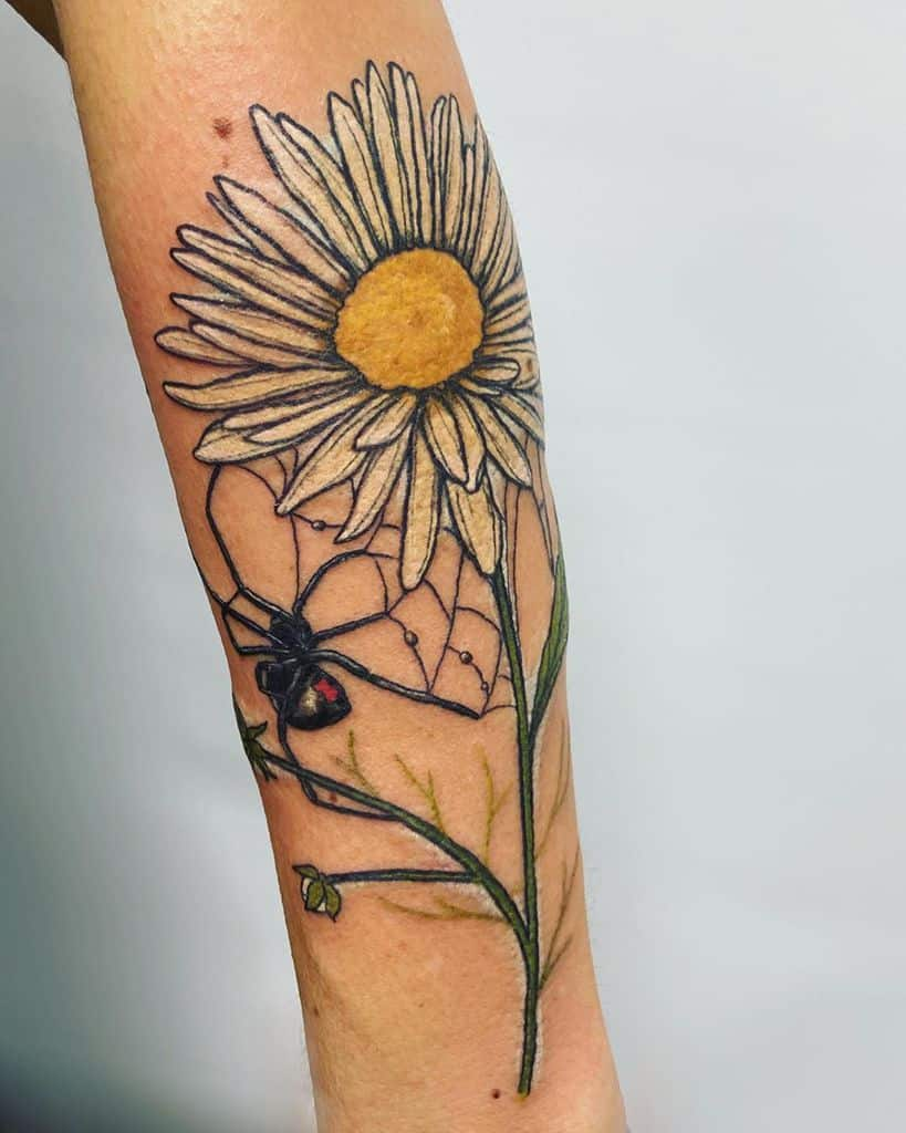 Forearm tattoo realistic color black widow spider with web and daisy