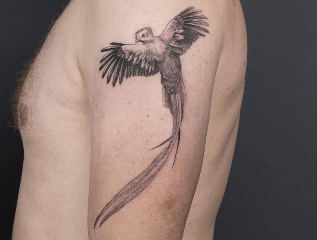 Blackwork Quetzal Tattoos Manu.lacasa