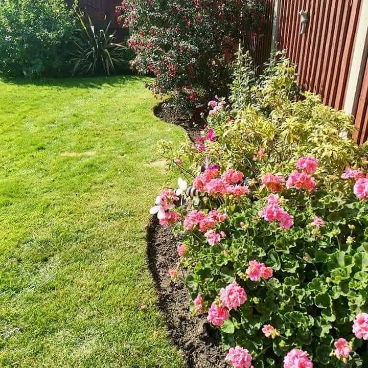 border garden flower garden ideas qualifiedlandscapegardener