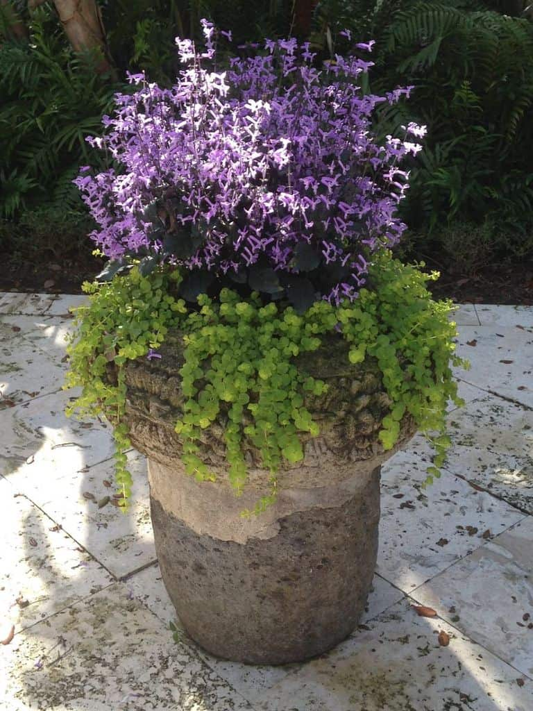 bricks and concrete planter box 1 flower bed ideas