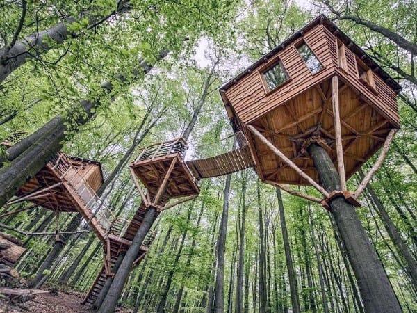 Bridge Treehouse Ideas Design