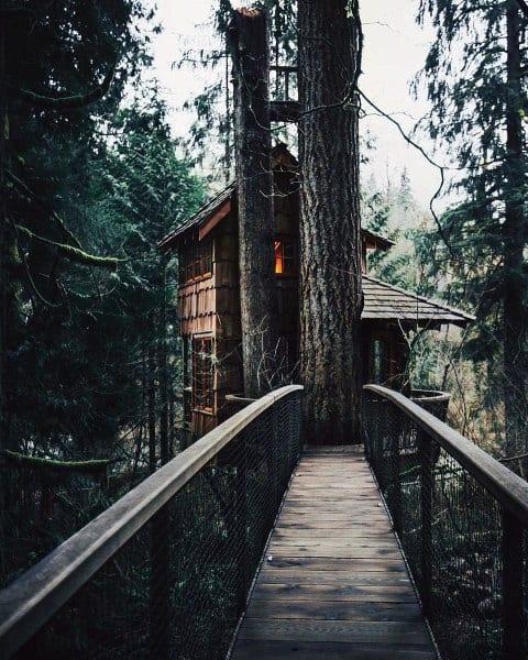 Bridge Treehouse Ideas