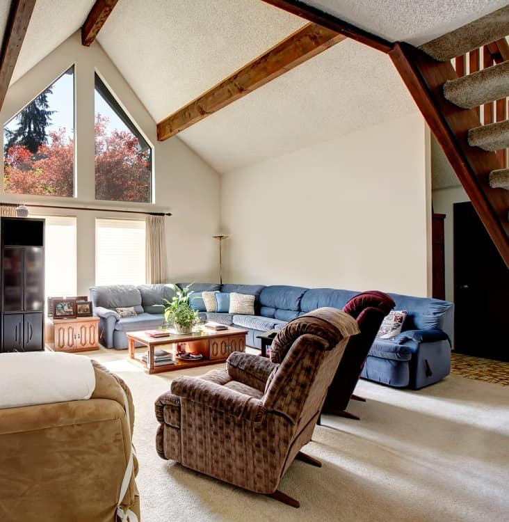 Bright Big Living Room Vaulted Ceiling