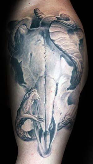 Bull Skull With Snake Guys Arm Tattoos