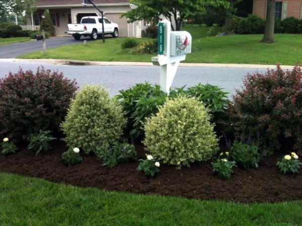 Bushes Home Exterior Designs Mailbox Landscaping