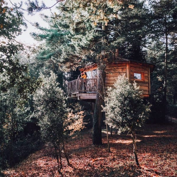 Cabin Treehouse Ideas