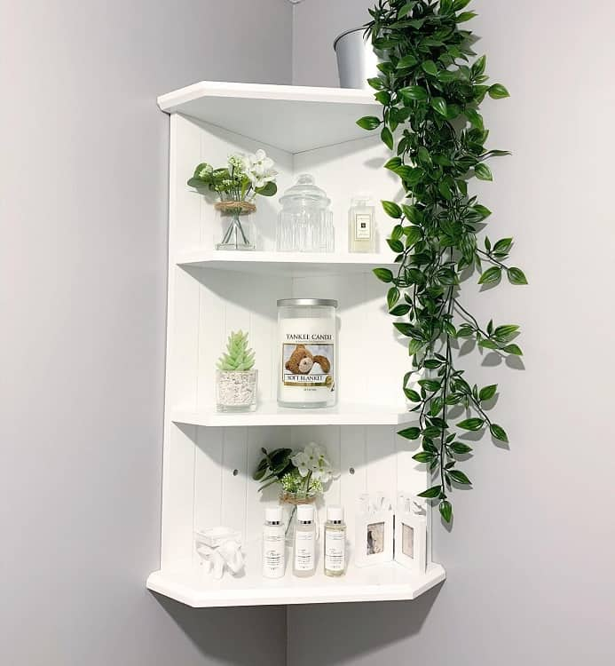 Cactus Plant Bathroom Shelf Decor Mymoseley