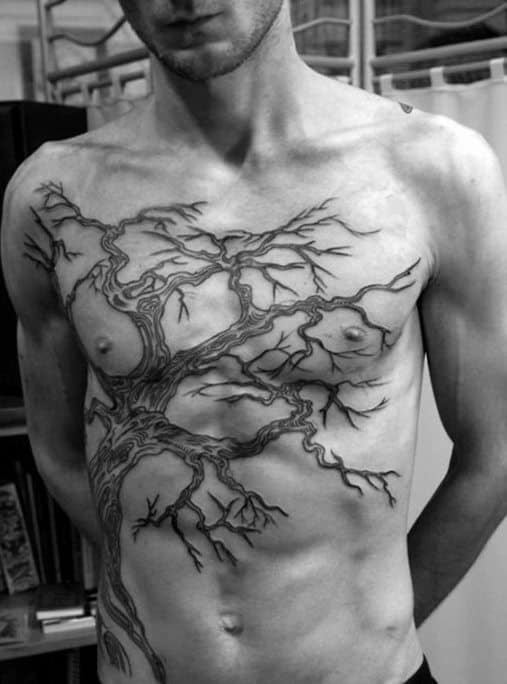 Chest And Ribs Male Family Tree Branches Tattoo Ideas