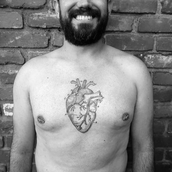 Chest Heart Anatomical Tattoo Ideas For Men