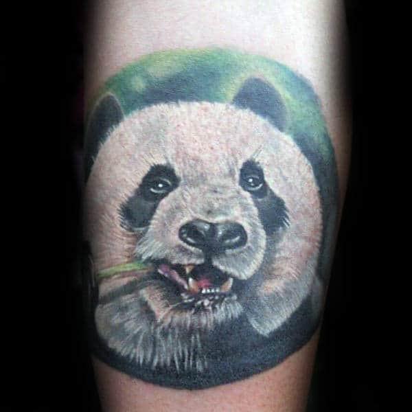 Circle Panda Bear Chewing On Green Plant Stem Mens Tattoos