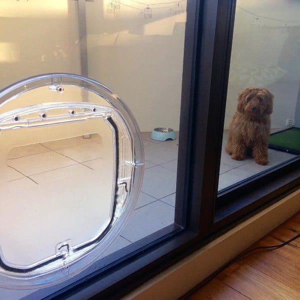 Circular Home Designs Doggy Door