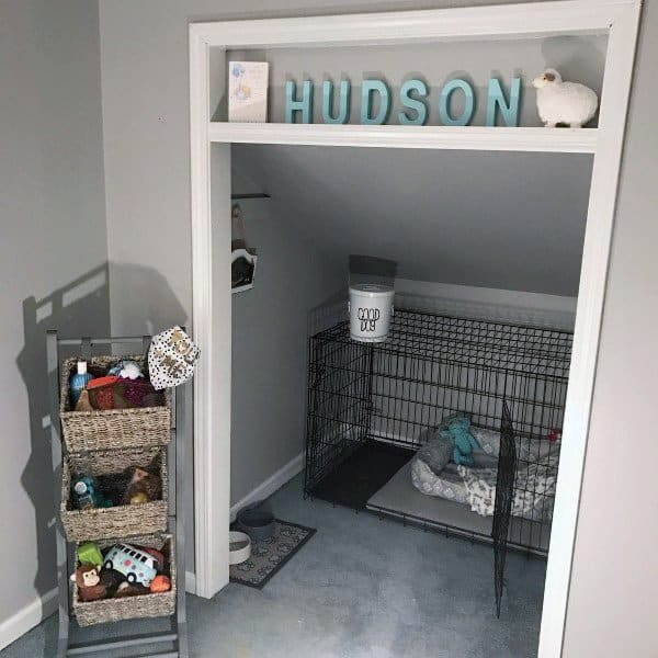 Top 60 Best Dog Room Ideas