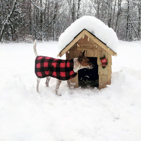 Cold Weather Outdoors Dog House Ideas