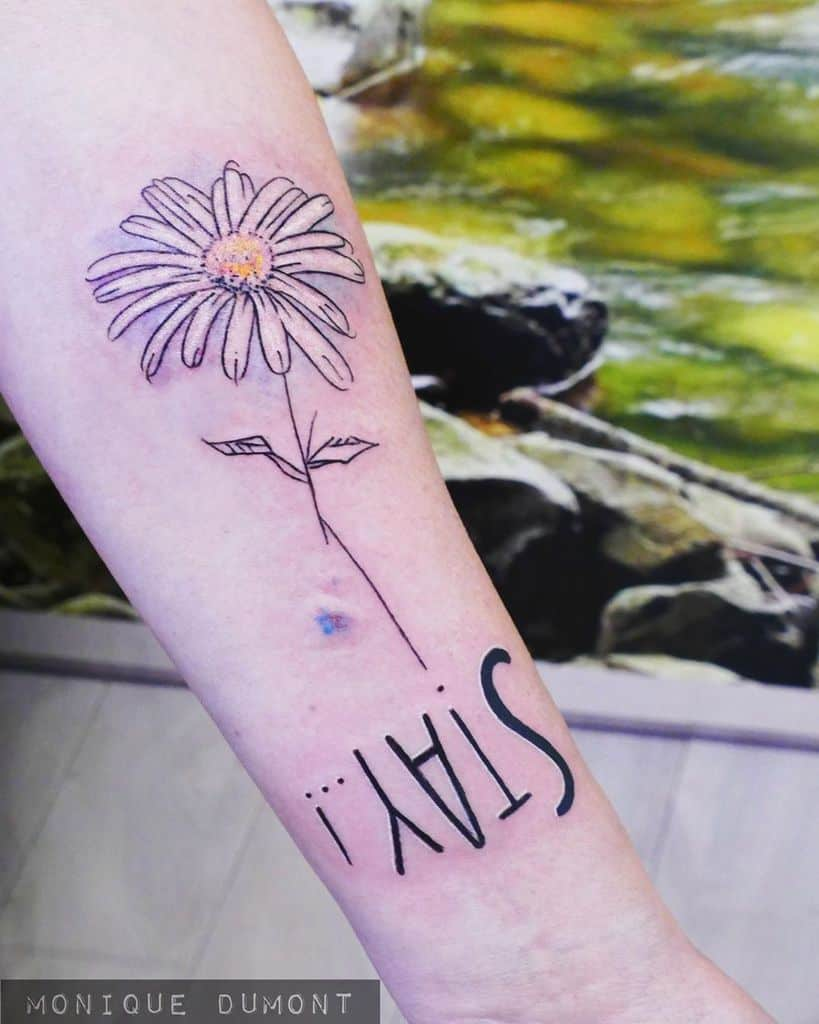 Forearm tattoo fine line illustrative color daisy with inverted script below 'Stay..!