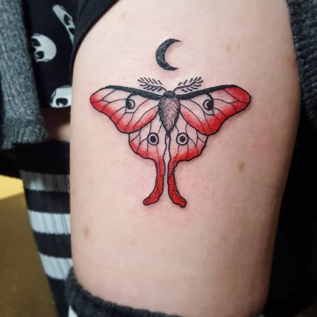 Color Luna Moth Ashleemshar